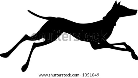 doberman running - stock vector