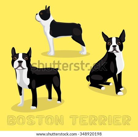boston terrier outline boston terrier stock images royalty free images vectors 3782