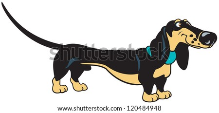dog,cartoon dachshund,vector picture isolated on white background - stock vector
