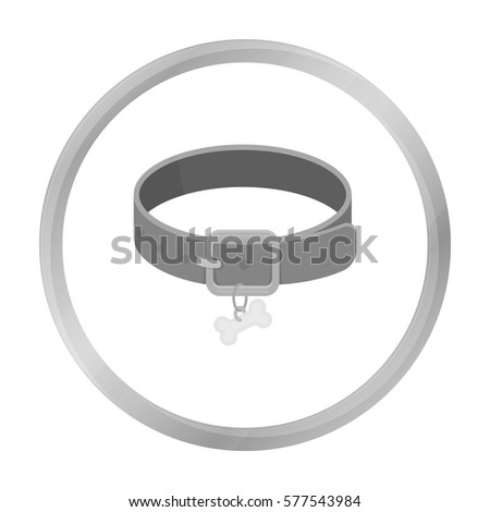 Collar Stock Photos Royalty Free Images Amp Vectors