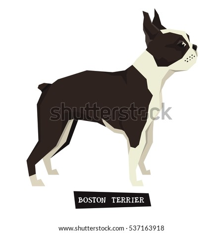Dog collection Boston Terrier Geometric style set