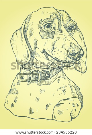 dog hand drawn realistic vector illustrations stylized engraving - stock vector