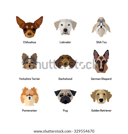 Dog Icon In Flat style ( Golden Retriever, Pug, Pomeranian, German Shepard, Dachshund, Yorkshire Terrier, Shih Tzu, Labrador, Chihuahua, ) - stock vector