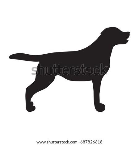 labrador silhouette standing vector illustration