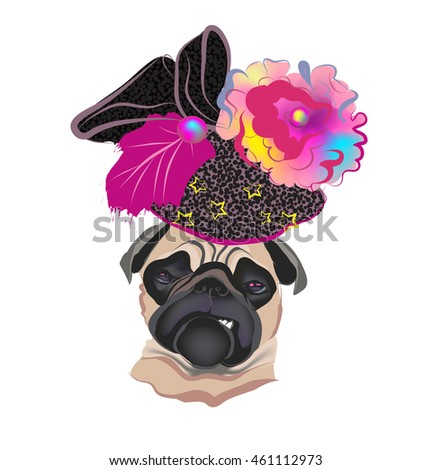 Dog pug fashion hat clothing