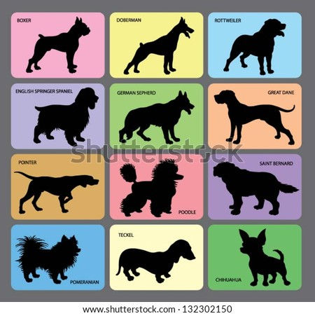 Dog Silhouettes 1. Various dogs card design with its names. Smooth and detail vector. - stock vector