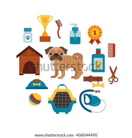 Dog training concept with pet care elements. Dog training: bowl, collar, leash. Dog training  poster vector illustration. Colorful dog training concept in flat style. Pet care dog training concept  - stock vector