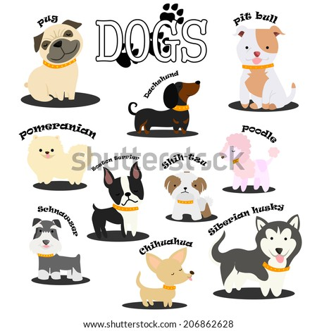 Dogs - stock vector