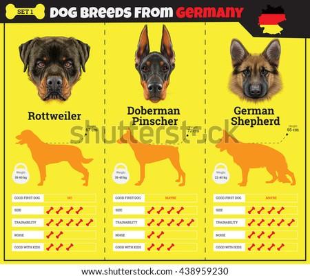 Giang Dog Breeds