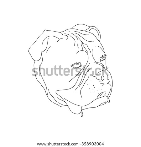 Dogs head in outline. Isolated on white background. Vector illustration