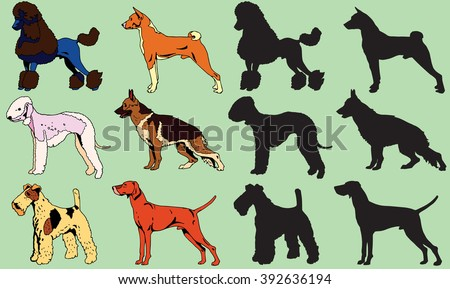 Dogs Set with Silhouette - stock vector