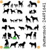 dogs silhouette part 2 of 3:dog's breed - stock photo