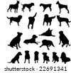 dogs - vector - stock vector