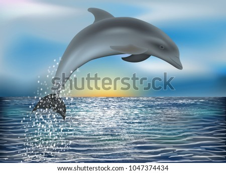 Dolphin background. vector illustration