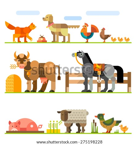 Domestic animals. Farm. Stock raising. Red cat, dog, collar, rooster, chicken, cow, horse, hay, saddle, pig, mud, sheep, duck, goose, aviary. Vector flat illustration  - stock vector
