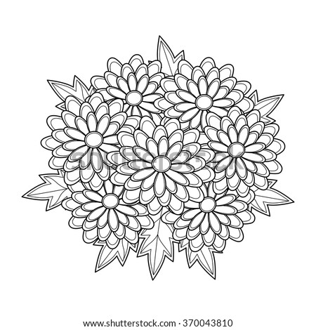 doodle art flowers chrysanthemum hand drawn herbal design elements coloring book for adults - Chrysanthemum Book Coloring Pages