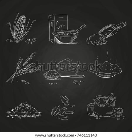 Doodle Cereals Groats And Porridge Muesli Cornflakes Oat Rye Wheat