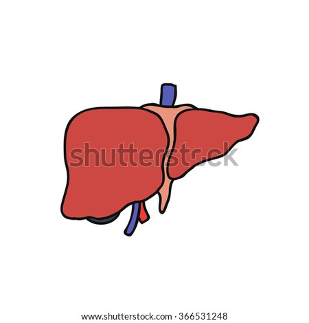 doodle icon. human liver. vector illustration - stock vector