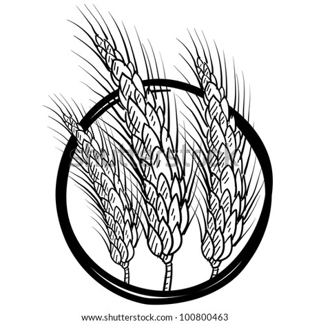 Doodle style sheaf of wheat illustration in vector format