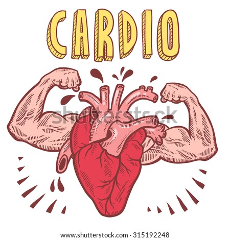 Doodle style vector drawing of a muscular heart announcing cardio with hand drawn text.