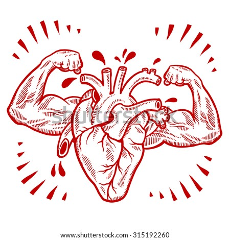Doodle style vector drawing of a muscular heart indicating fitness, health, exercise, or cardiovascular medicine. - stock vector