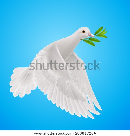 Dove of peace flying with a green twig after flood - stock vector