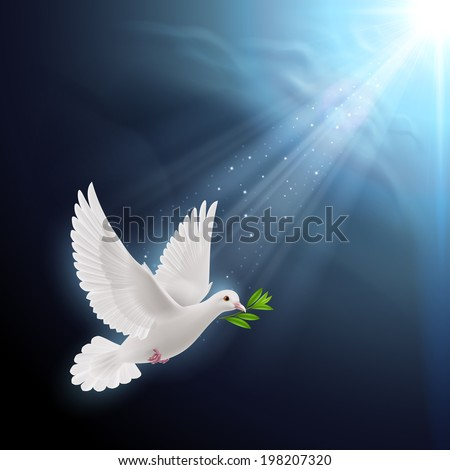Dove of peace flying with a green twig after flood in sunlight - stock vector