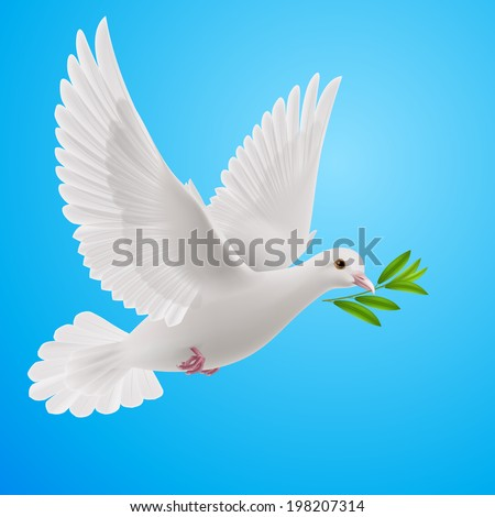 Dove of peace flying with a green twig after flood on a blue background - stock vector