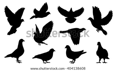 dove silhouettes on the white background - stock vector