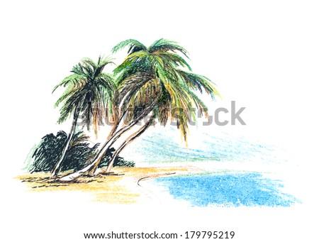 Drawing beach palm trees vector illustration stock vector for Disegno paesaggio marino