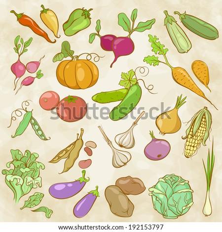 Summer dress clipart veggies