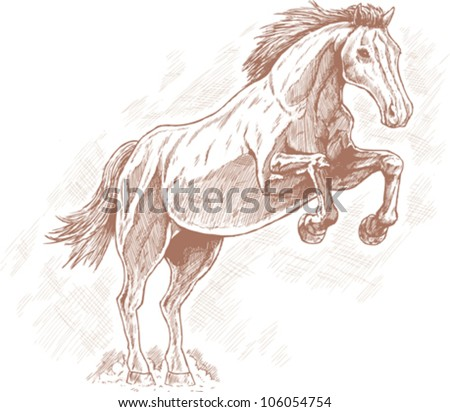 Drawing of horse.