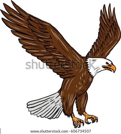 Eagle Sketch Stock Images Royalty Free Images Amp Vectors