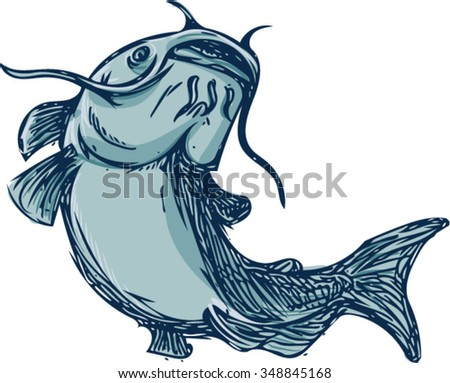 Drawing sketch styleillustration of a ray-finned fish catfish also known as mud cat, polliwogs or chucklehead jumping up set on isolated white background.  - stock vector