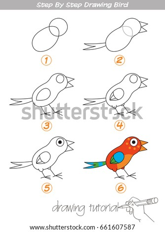 Bird Drawing Stock Images Royalty-Free Images U0026 Vectors   Shutterstock