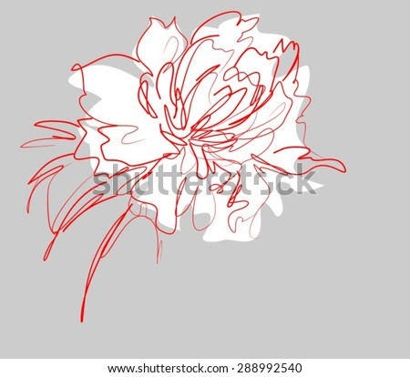 Drawing vector graphics with floral patterns with roses and tulips for design. Floral flower natural design. Graphic, sketch drawing. - stock vector