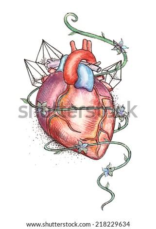 Drawn human heart hand drawn tattoo style. - stock vector