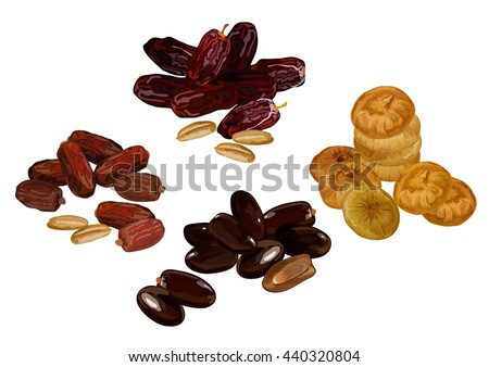 Dried fruits. Vector illustration. Dried figs and dates. Vector illustration of dried fruits. set of dried fruit.