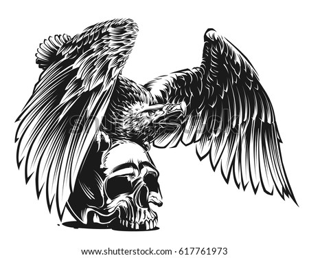 Eagle skull stock images royalty free images vectors for Skull and eagle tattoo