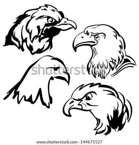 eagle  doodle sketch set, collection  cartoon vector  illustration