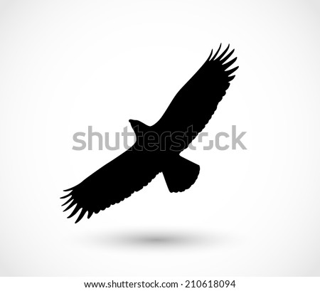 Eagle icon vector - stock vector