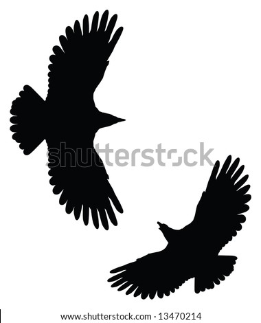 eagle silhouettes - stock vector Eagle Silhouette Vector