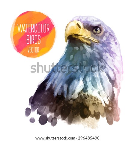 Eagle watercolor  bird isolated on white background. Vector illustration - stock vector