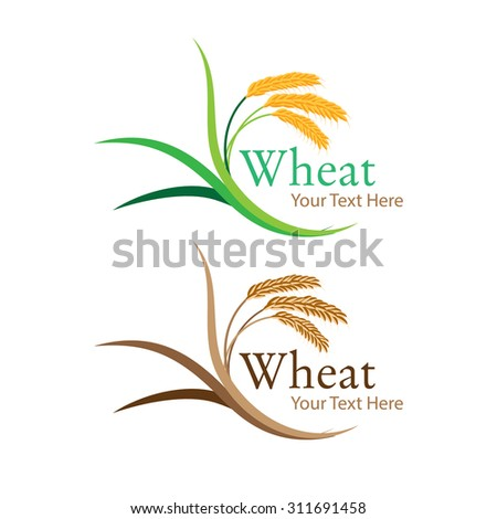 Ears of wheat - stock vector