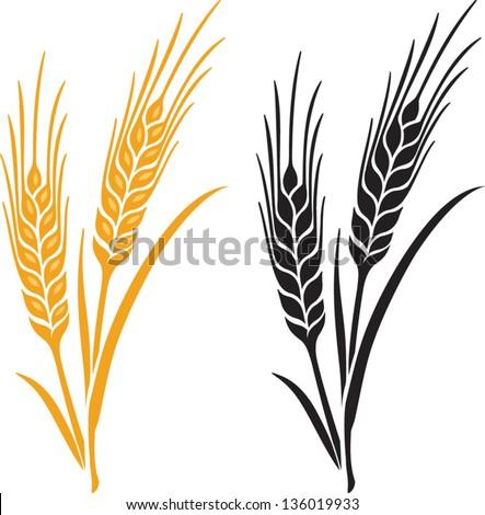 ears wheat barley rye vector visual stock vector royalty free rh shutterstock com wheat vector art wheat vector png