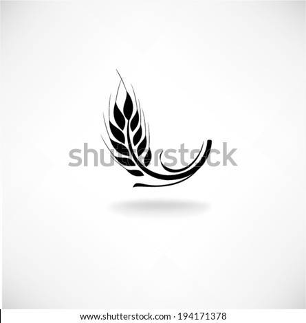 Ears of wheat in front of white background. Vector - stock vector