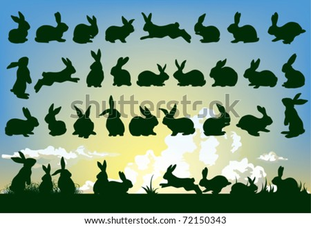 easter rabbit outlines with sky background - stock vector