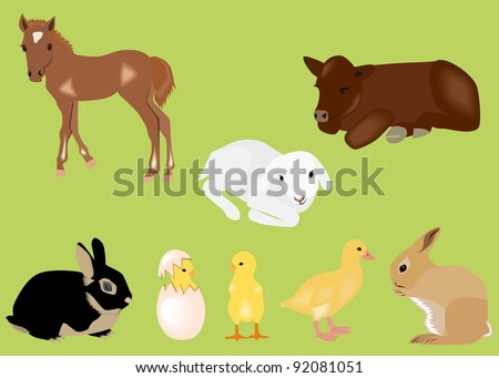 Easter spring baby animals - stock vector