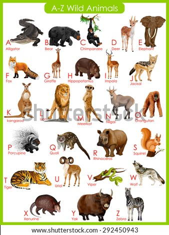 easy to edit vector illustration of chart of A to Z wild animals