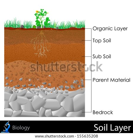 Erde lizenzfreie bilder und vektorgrafiken kaufen for What are the different layers of soil